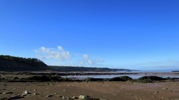 Down on the beach, Joggins Fossil Cliffs, Nova Scotia, Canada