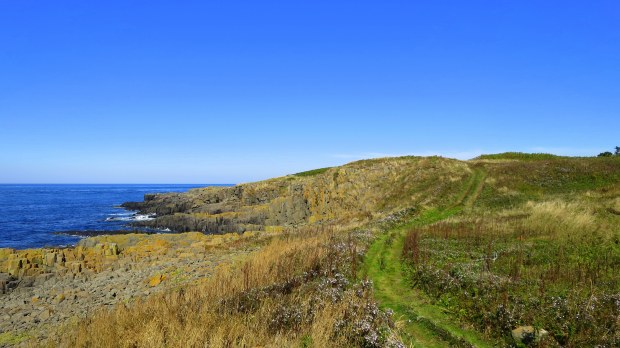 Coastal Trail, Brier Island Nature Preserve, Nova Scotia, Canada