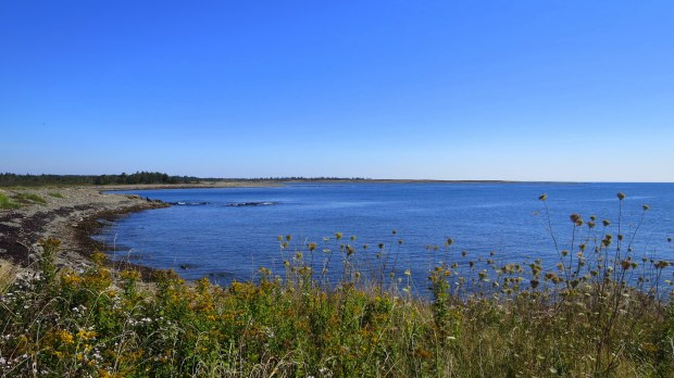 View of Big Pond Cove, Coastal Trail, Brier Island Nature Preserve, Nova Scotia, Canada