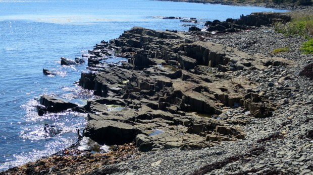 Closeup of columnar basalt, Coastal Trail, Brier Island Nature Preserve, Nova Scotia, Canada