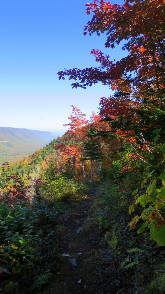 Looking back on Aspy Trail, Cape Breton Highlands National Park, Nova Scotia, Canada