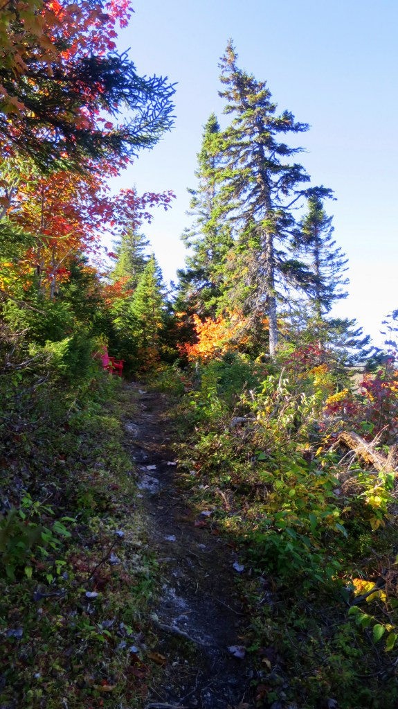 Looking up Aspy Trail, Cape Breton Highlands National Park, Nova Scotia, Canada