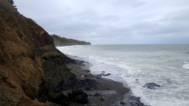 Beach with Silurian-age cliffs, Arisaig Provincial Park, Nova Scotia, Canada