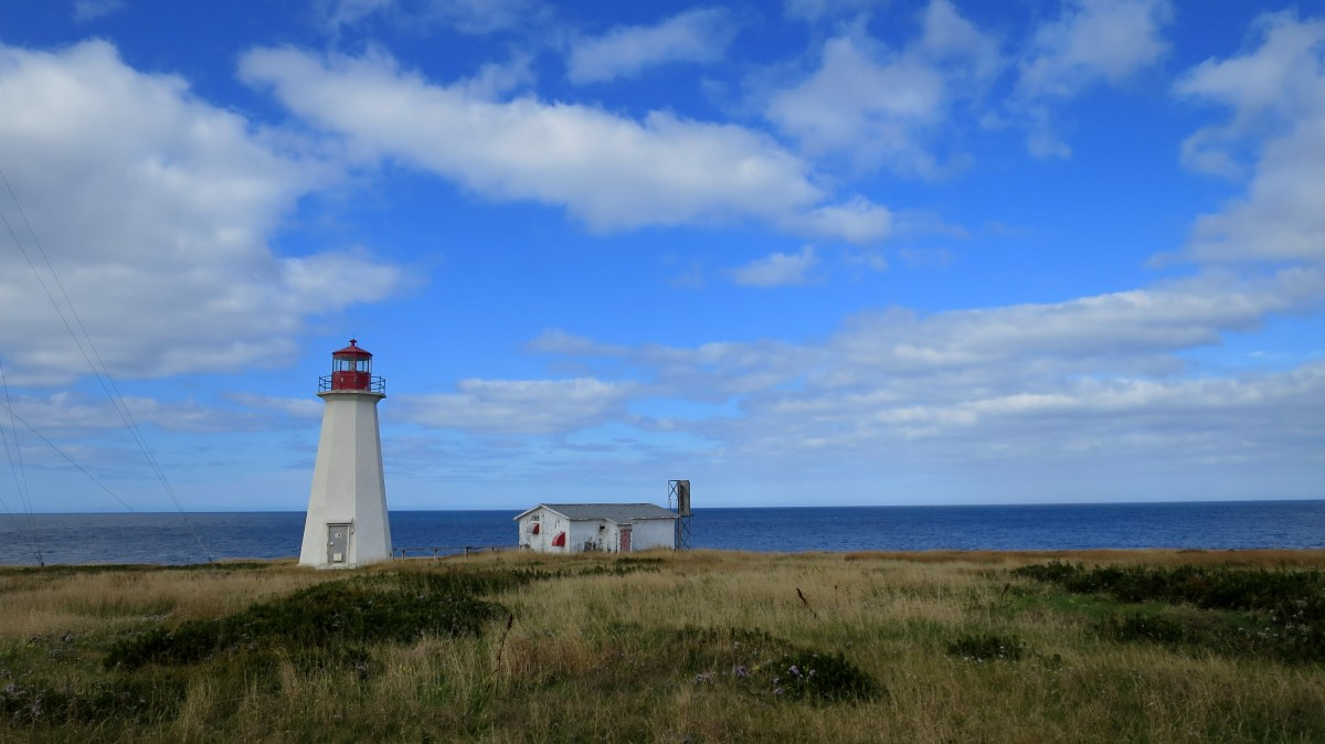 Cheticamp Island, Enragee Point Lighthouse, and Scenic Cows