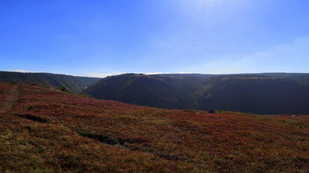 Headland, Skyline Trail, Cape Breton Highlands National Park, Nova Scotia, Canada