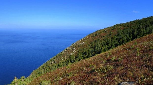 View from headland, View from headland, Skyline Trail, Cape Breton Highlands National Park, Nova Scotia, Canada
