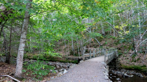 Bridge over MacIntosh Brook, MacIntosh Brook Trail, Cape Breton Highlands National Park, Nova Scotia, Canada