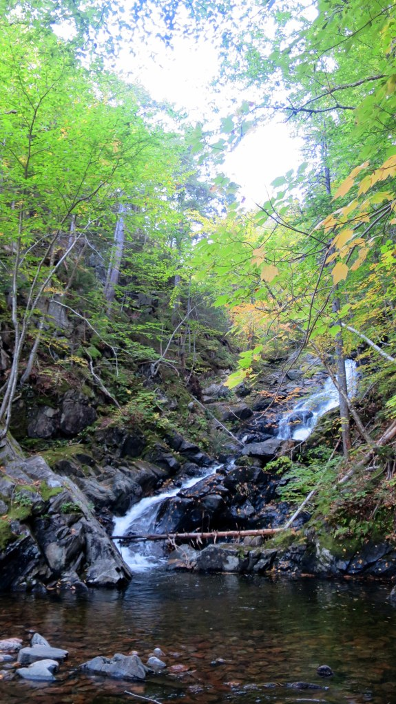 Falls, MacIntosh Brook Trail, Cape Breton Highlands National Park, Nova Scotia, Canada