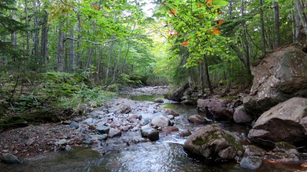 MacIntosh Brook, Cape Breton Highlands National Park, Nova Scotia, Canada