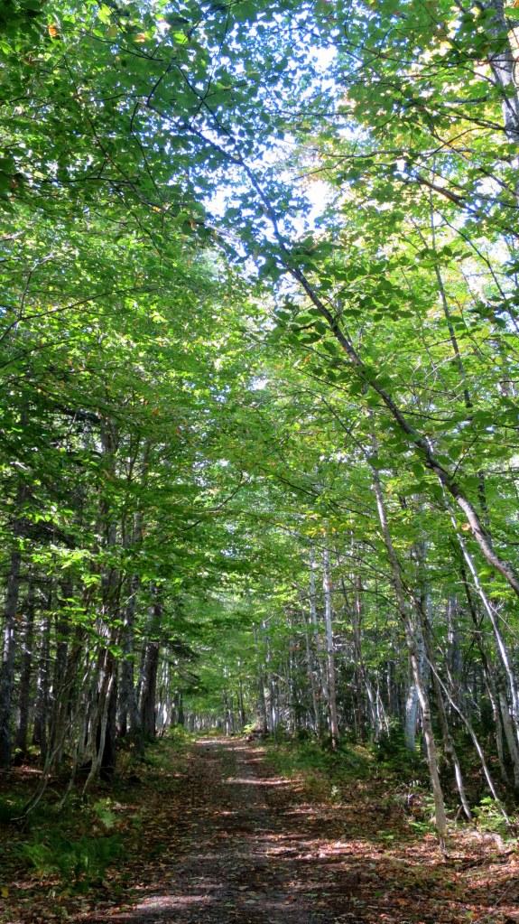 Aspy Trail, Cape Breton Highlands National Park, Nova Scotia, Canada