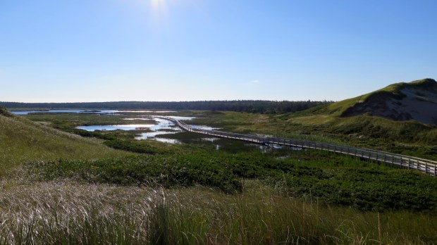 Looking back on floating boardwalk and Bowley Pond from atop dunes, Greenwich Dunes Trail, Greenwich, Prince Edward Island National Park, Prince Edward Island, Canada