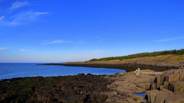 Columnar basalt, Coastal Trail, Brier Island, Nova Scotia, Canada