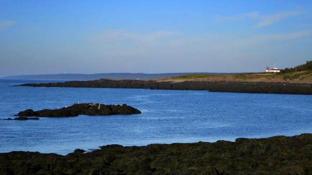 Walking the Coastal Trail with seals in foreground and Grand Passage Lightstation in background, Brier Island, Nova Scotia, Canada