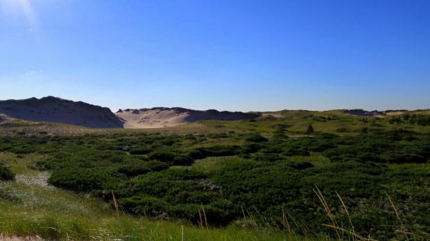 Parabolic dunes, Greenwich Dunes Trail, Greenwich, Prince Edward Island National Park, Prince Edward Island, Canada