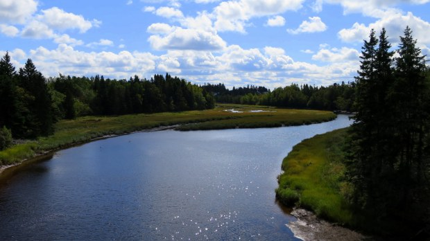 View from bridge on Tidnish Trail, Tidnish, Nova Scotia, Canada