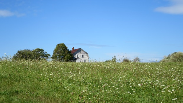 House viewed from Cheverie Salt March Trail, Cheverie, Nova Scotia, Canada
