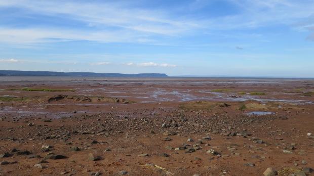 Mud flats, Evangeline Beach, Nova Scotia, Canada