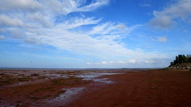 Mud flats, Evangaline Beach, Nova Scotia, Canada
