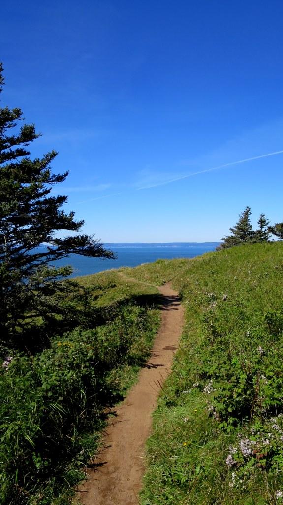 Trail along headland, Cape Split Trail, Cape Split Provincial Park, Nova Scotia, Canada