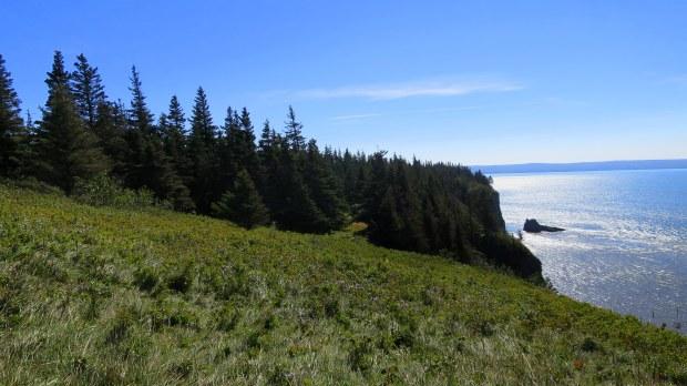 Meadows, Cape Split Trail, Cape Split Provincial Park, Nova Scotia, Canada
