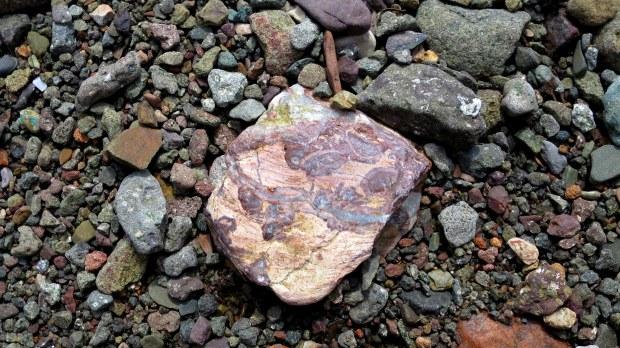 Rocks, Wasson Bluff, Parrsboro, Nova Scotia, Canada