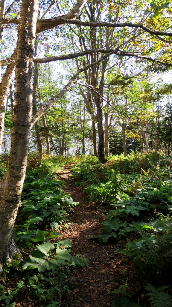 Partridge Island Trail, Partridge Island, Parrsboro, Nova Scotia, Canada