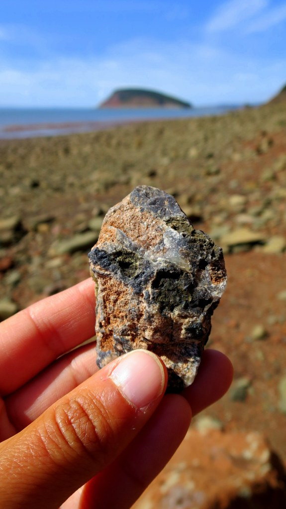 Conglomerate with quartz, Five Islands Provincial Park, Nova Scotia, Canada