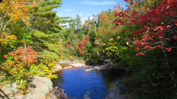 Black Brook, Mary Ann Falls Trail, Cape Breton Highlands National Park, Nova Scotia, Canada