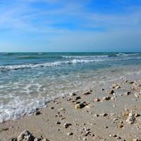 Honeymoon Island State Park, Florida