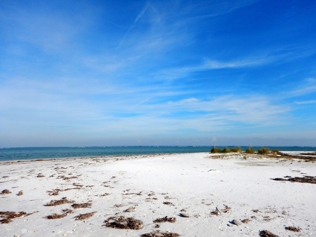 End of the barrier island, Honeymoon Island State Park, Florida