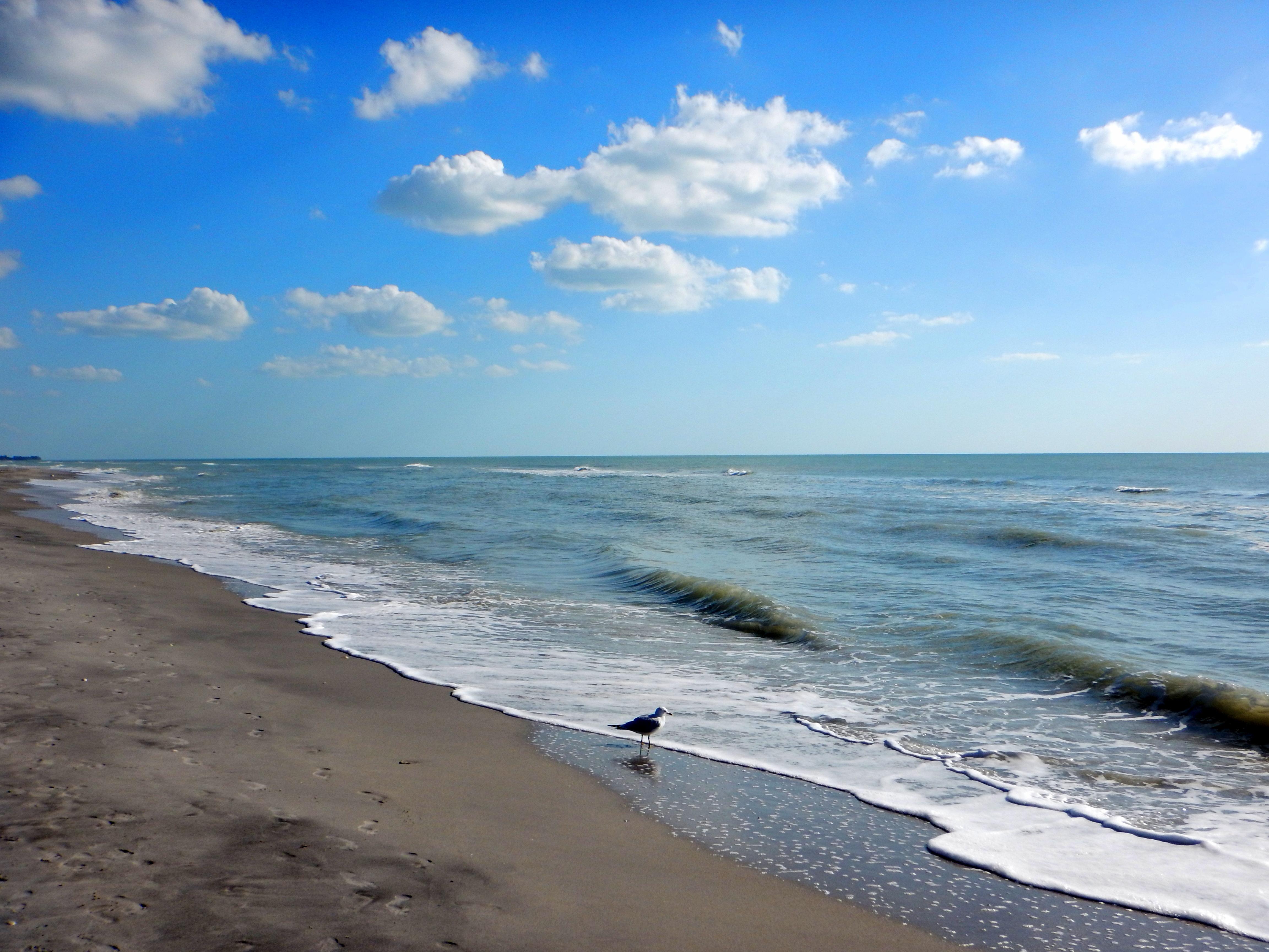 caspersen beach florida