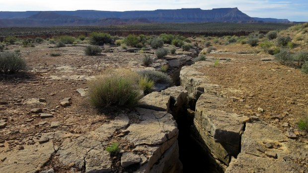 Cracks in the mesa, Virgin River Canyon Rim, Utah