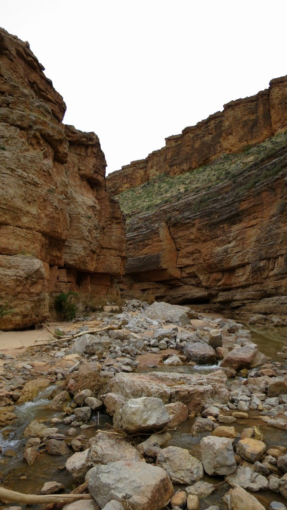 Bottom of Virgin River Canyon, Canal Trail, Hurricane Cliffs Recreation Area, Utah