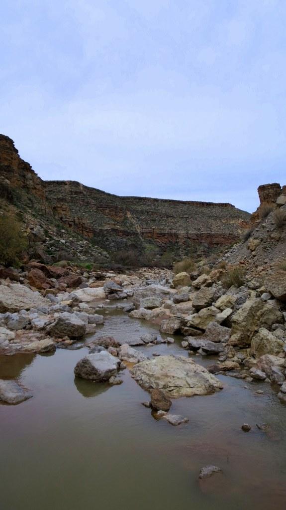 Looking downstream in Virgin River Canyon, Canal Trail, Hurricane Cliffs Recreation Area, Utah
