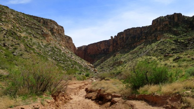 Side canyon off Canal Trail, Hurricane Cliffs Recreation Area, Utah