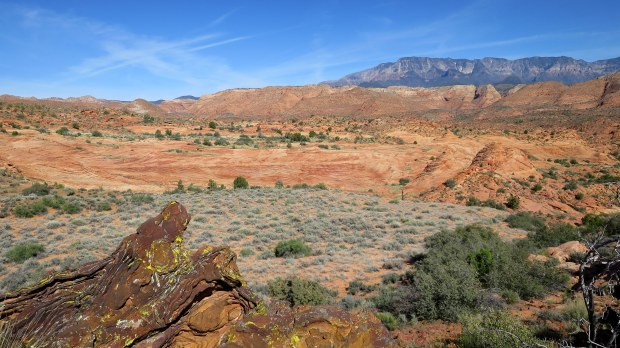 Liesegang rings in foreground with petrified dunes, red sandstone reef, and Pine Mountains in background, Red Cliffs National Conservation Area, Utah