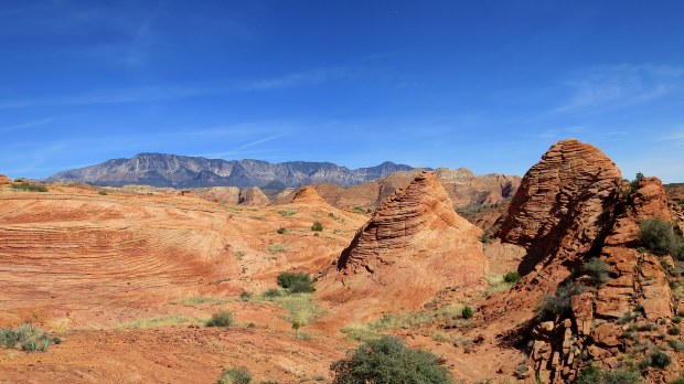 Petrified sand dunes (now sandstone), Red Cliffs National Conservation Area, Utah