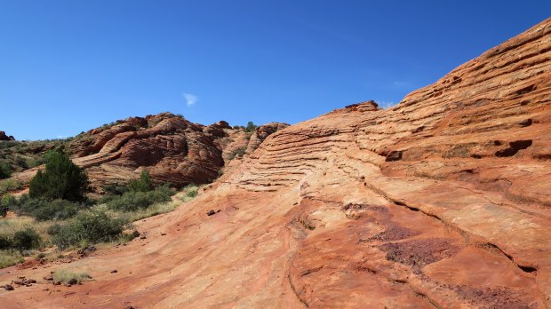 Petrified sand dunes, Red Cliffs National Conservation Area, Utah