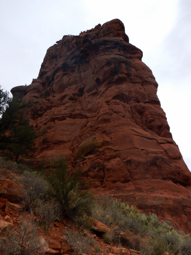 Red rock at mouth of canyon cliffs, Bell Trail, Wet Beaver Wilderness, Coconino National Forest, Arizona