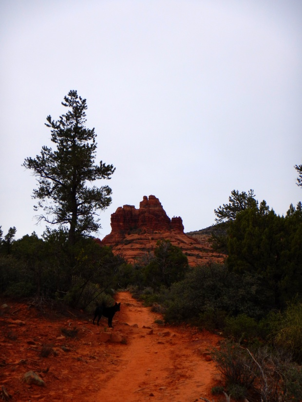 Courthouse Rock in the distance from Bell Rock Pathway, Sedona, Arizona