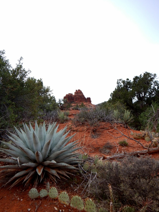 Bell Rock Pathway, Sedona, Arizona