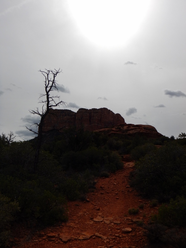 Courthouse Butte, Bell Rock Pathway, Sedona, Arizona