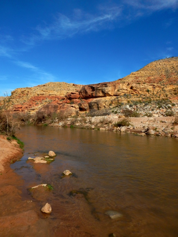 Gorge, Virgin River Canyon Recreation Area, Arizona