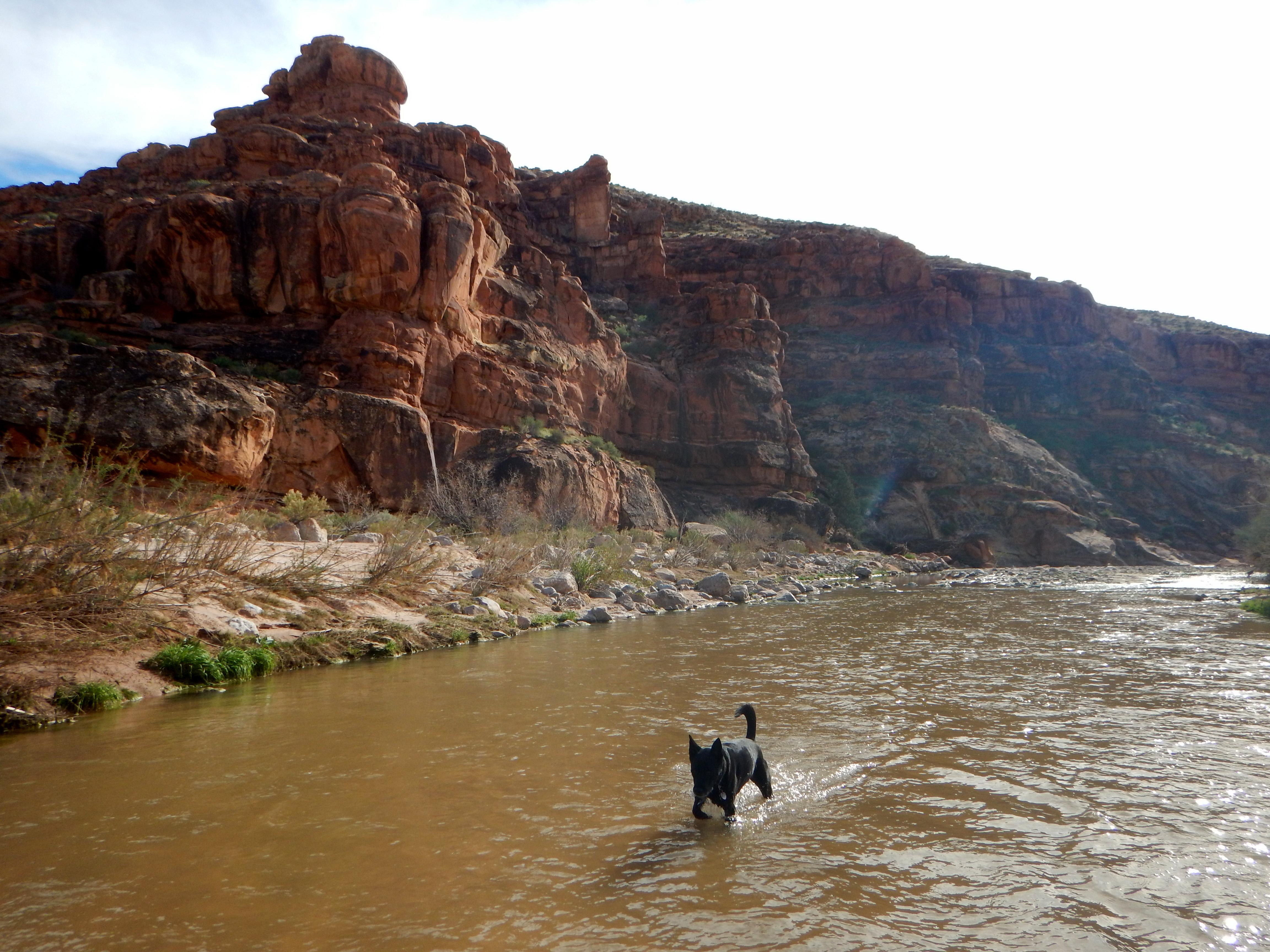 virgin river - photo #9