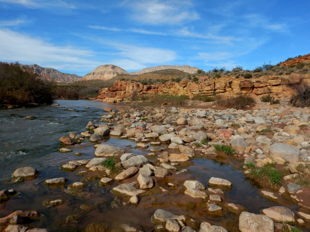 Virgin River, Virgin River Canyon Recreation Area, Arizona