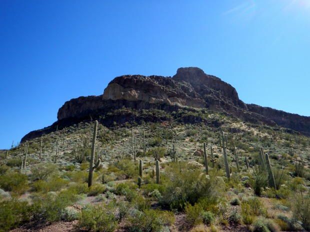 Ajo Mountain Drive, Organ Pipe Cactus National Monument, Arizona