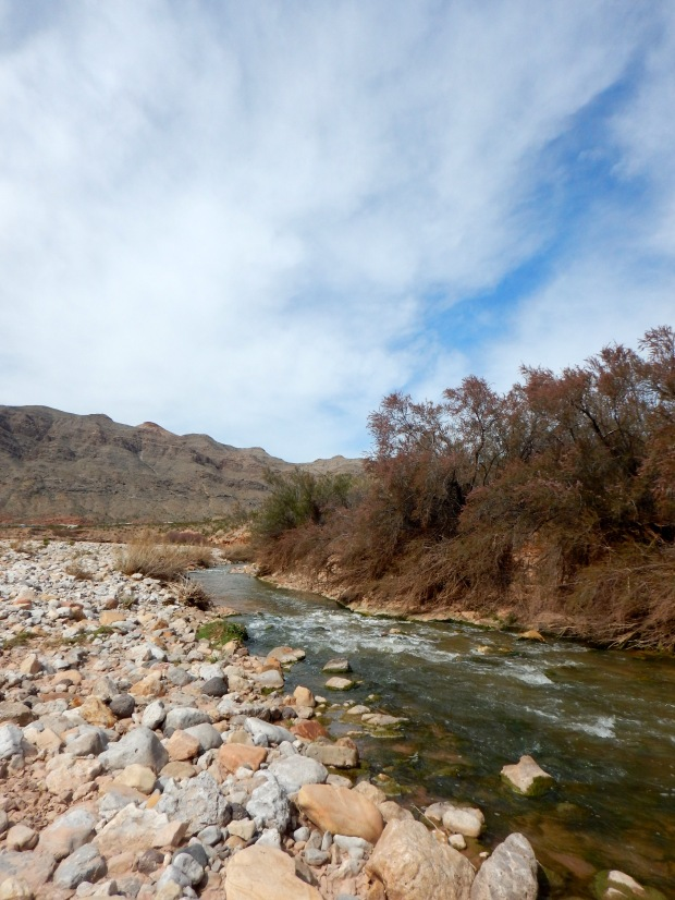 Virgin River, Virgin River Canyon Recreation Area, Arizona