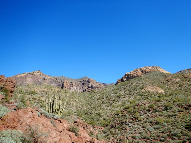 Climbing Bull Pasture Trail, Organ Pipe Cactus National Monument, Arizona