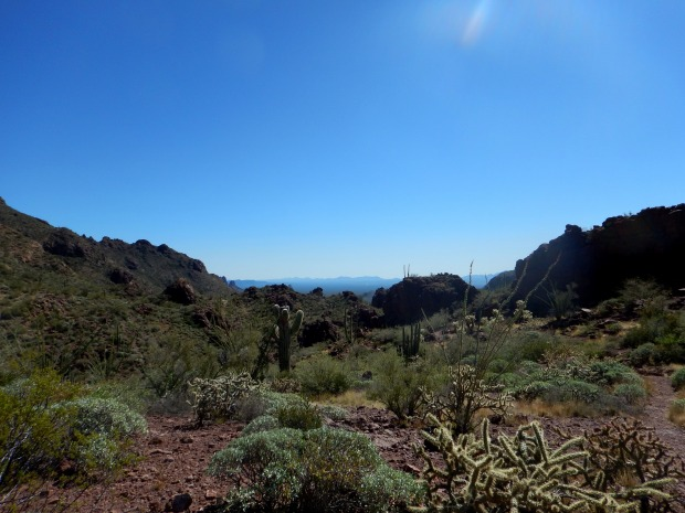 Bull Pasture Trail, Organ Pipe Cactus National Monument, Arizona