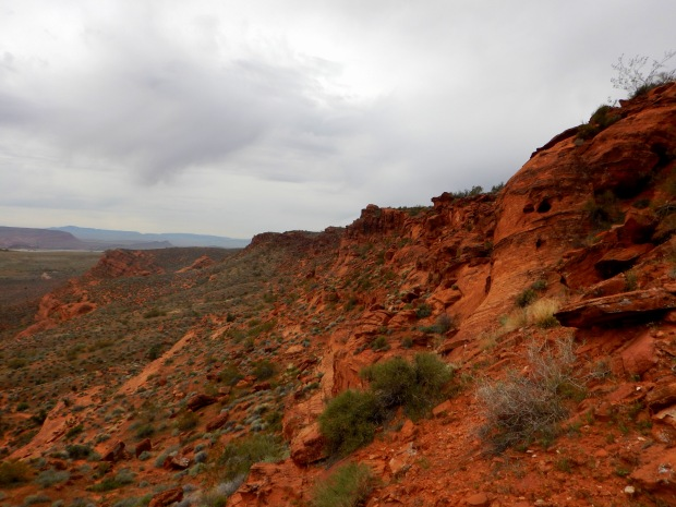 Looking back, Red Cliffs National Conservation Area, Utah